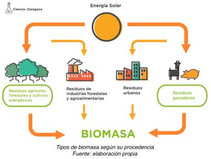 Tipos de biomasa